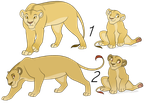 Lioness adopts /CLOSED/ by Karksy
