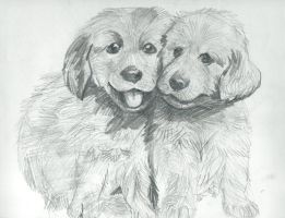 Two Dogs by Dedejeans