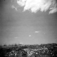 Holga 89 by xxlogre