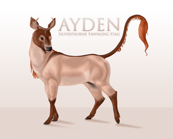 Ayden by TigressDesign