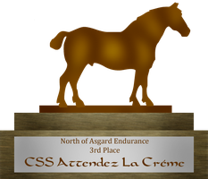 North of Asgard Endurance 3rd Place by Moshpikachu