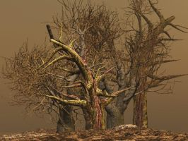 Dead Trees by fractal2cry