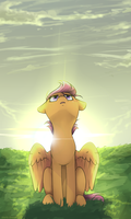 Scootaloo by ShellyDreams