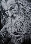 Gandalf by Epileptic-Zombie