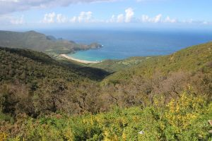 ANNABA by drouch