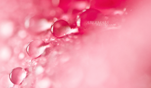 Drops in a Line by abermals