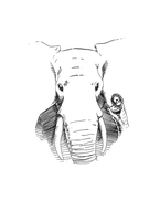 The Elephant by pachryso