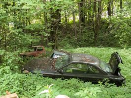 Abandoned Gray Car with friends by RowyeStock