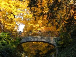 Autumn Footbridge by Rothar