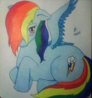 MLP Shy Rainbow Dash by blackrose88