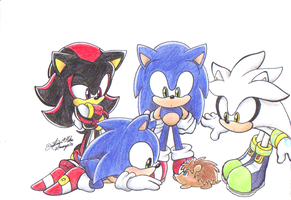 Hedghogs meet ...........Hedgehog? by sonicartist16