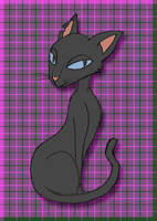 Not the Other Cat by nanashi