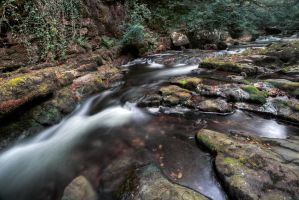 Watersmeet walk by CharmingPhotography