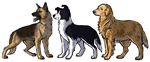 Team Free Dogs by Jennilah