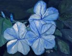 Lucila's Blue Flowers by CarolynYM