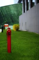 red hydrant by grajcar