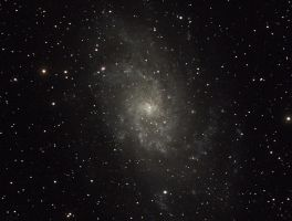 M33 Galaxy by geors