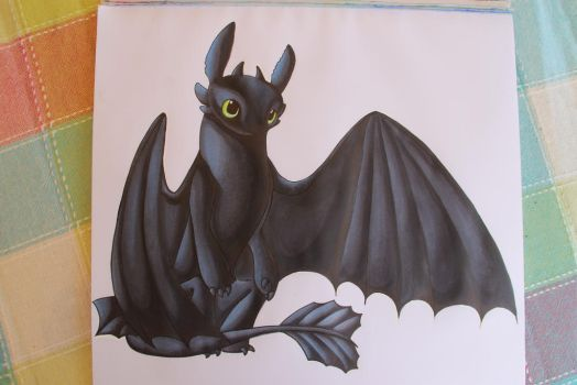 Toothless/Krokmou by Mioumioune