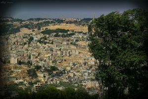 View to Jerusalem 2 by ShlomitMessica