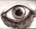 Eye WIP 3 by DanielNeeta