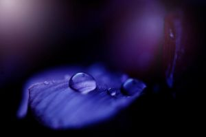 Water drop by Fialu