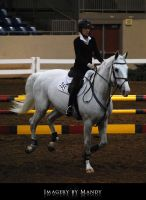 Gray Canter (1) by chantriera
