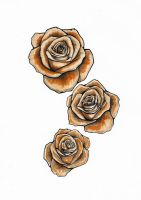 3 roses by jafaime
