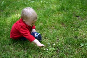 Baby in the Grass 5 by ArtistStock