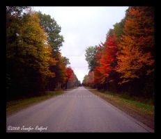 Autumn on Mackinac Trail by Jenna-Rose