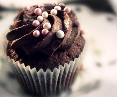 Chocolate Cupcake by i-can-talk