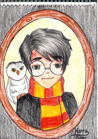 Harry and Hedwig by artloverndrmr