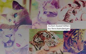 action sweet kittens by itsrockersdesigns