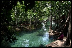Jungle river by Jensfromsweden
