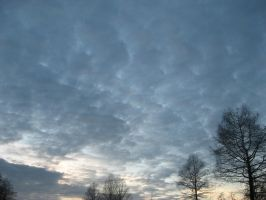 14-03-08 The Sky 2 by Herdervriend