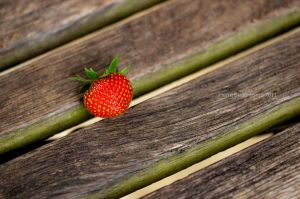 Strawberry on a plank by Mad-Popietro