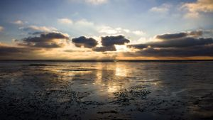Wadden sea sunbeams by WilliamdeWorde