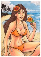 Island Dreams - Hibiscus Girl by AmyClark