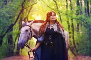 Lady of Winterfell by inSOLense