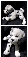 Douglas Medium Floppy Dogs - Squirt Dalmatian by The-Toy-Chest