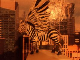 Sunset in New York City with touchdowned Pegasus by Kreativjunkie