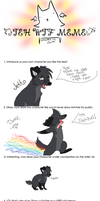 Wtf Meme Thing :D by DistortedReveries
