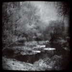 Crow Creek by intao