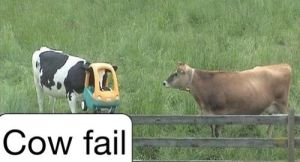 Silly cow. by The--Mad--Russian