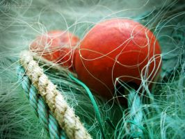 Rope with Floats in Fishing Net by DuchesseOfDusk