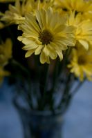 Vase of Mommys Flowers by Suinaliath