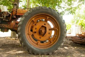 Old Tractor Wheel Stock by CatherineCross