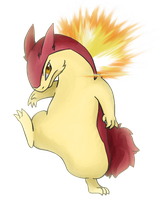 Typhlosion by HeadSmashScrafty