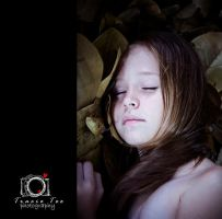 Dream A Little Dream by tracieteephotography
