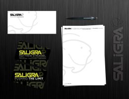 corporate identity for SALIGRA by sounddecor