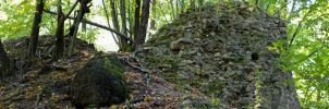ruins of old castle in jelsava by izzy68